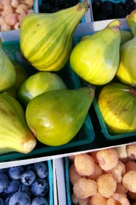 tiger's stripe fig (pudwill farms)